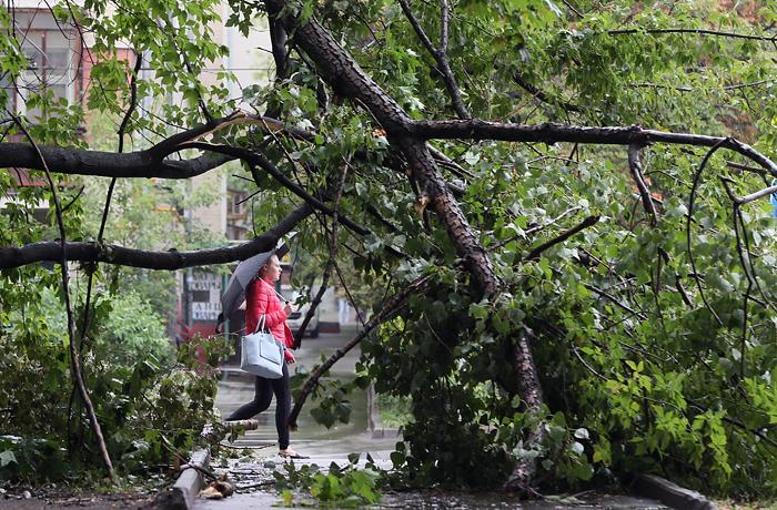 """""""Оранжевый"""" уровень опасности объявили в Москве из-за дождей"""