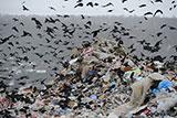Минприроды предложило перечень запрещенных к захоронению отходов