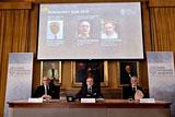 Нобелевскую премию по физике присудили за топологические фазовые переходы