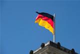 Глава комитета Бундестага подтвердил готовность ввести санкции против РФ из-за Сирии