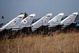Совфед одобрил бессрочное размещение авиагруппы ВС РФ в Сирии