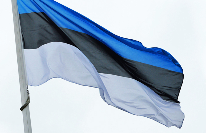 Впосольстве Российской Федерации высмеяли предупреждение о«гибридной войне» вЭстонии