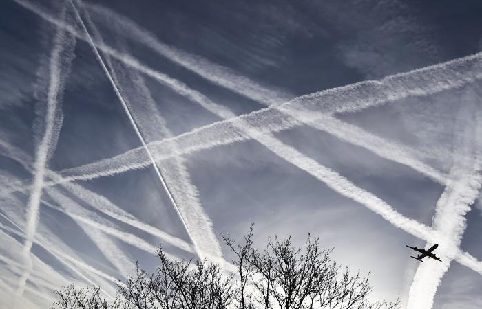 """Менеджмент """"Трансаэро"""" подготовил план запуска новой авиакомпании"""