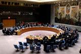 Россия и Китай заблокировали проект резолюции СБ ООН по прекращению огня в Алеппо