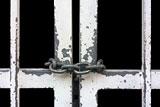 Карельское УФСИН пока не будет подавать иск к Дадину из-за жалоб на пытки