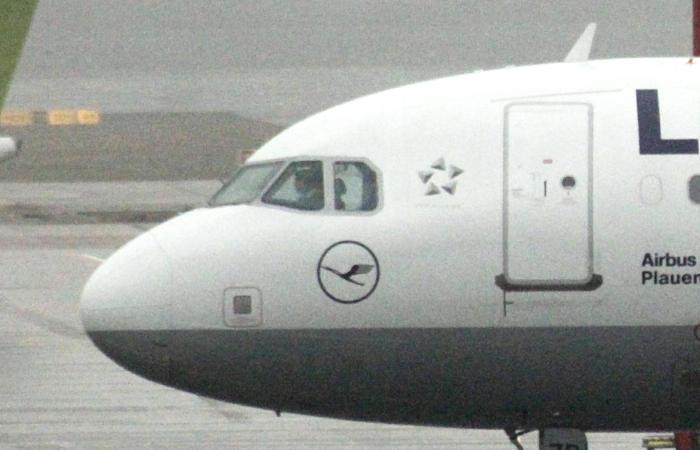 """Немецкий A320 сел в """"Домодедове"""" с поврежденным лобовым стеклом"""
