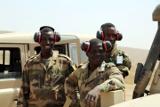 Сенегальские войска вошли на территорию Гамбии