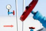 """""""Газпром"""" с февраля сократил прокачку по """"Северному потоку"""" и OPAL"""