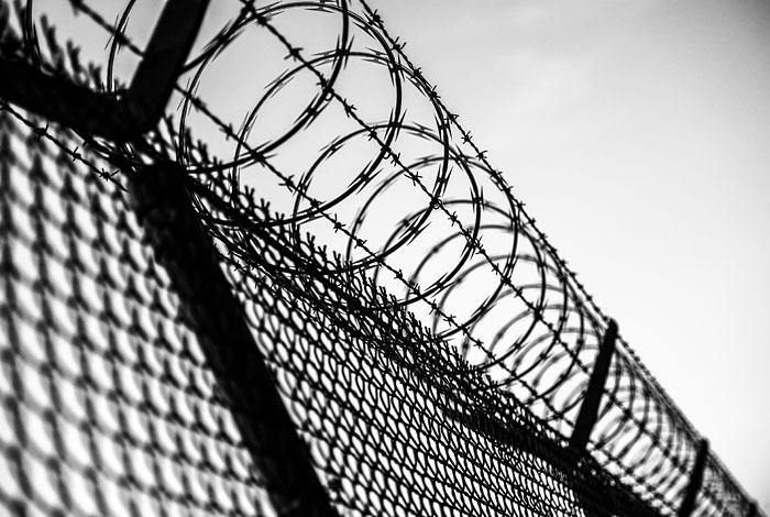 По заявлению о пытках Дадина в колонии проведут новую проверку
