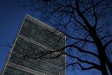 Американские СМИ узнали о планах США выйти из Совета ООН по правам человека