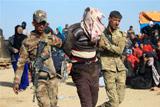 СМИ объявили о признании лидером ИГ поражения в Ираке