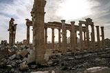 Директор Института археологии РАН рассказал о шансах восстановления Пальмиры