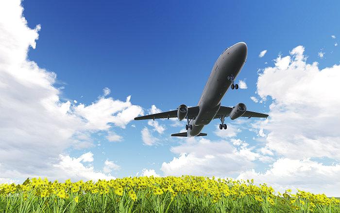 Нидерланды отозвали разрешение на посадку самолета главы МИД Турции