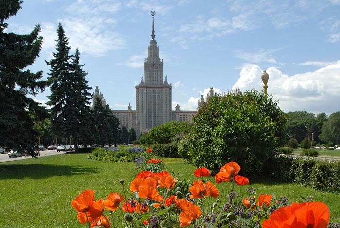 Садовничий объяснил предназначение деревянного помоста на клумбах перед зданием МГУ