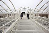 """Против строившего """"Кресты-2"""" бизнесмена возбуждено дело о растрате"""