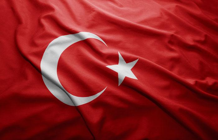 Большинство турок высказались за переход к президентской форме правления