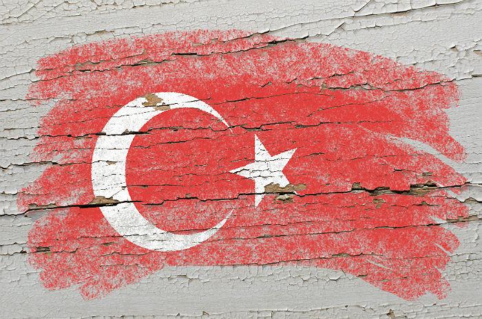 Дворкович не исключил ограничения поставок из Турции в ответ на ее действия