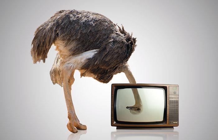 НТВ закрыл самое скандальное шоу ипообещал освободиться отагрессии вэфире