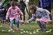 Поиск пасхальных яиц в канадском Ванкувере
