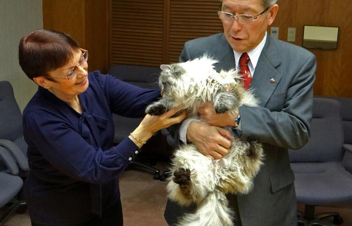 Кот подаренный путиным