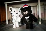 ОКР принял приглашение МОК участвовать в Олимпиаде-2018