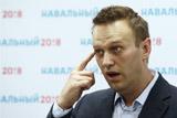 МВД не нашло фактов коррупции в расследовании Навального о Медведеве