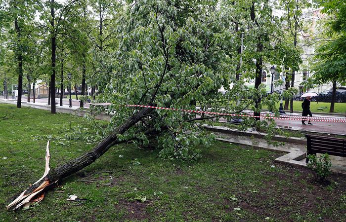 Шесть человек стали жертвами урагана в Москве