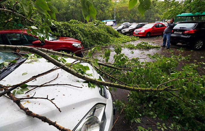 Число жертв урагана в Москве выросло до восьми человек