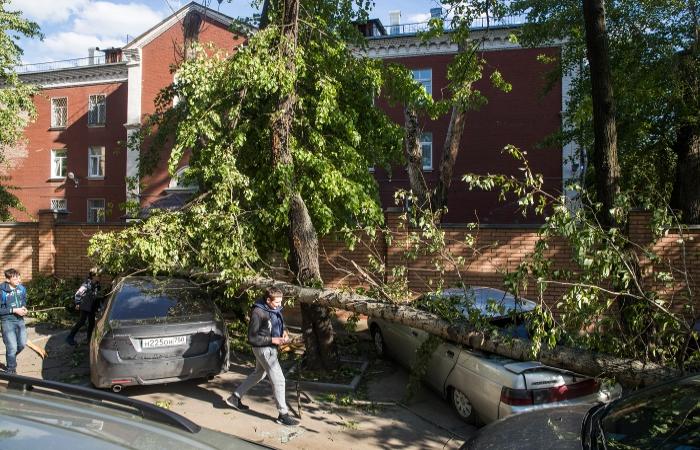 В МЧС объяснили отсутствие СМС-предупреждений о надвигающемся урагане в Москве