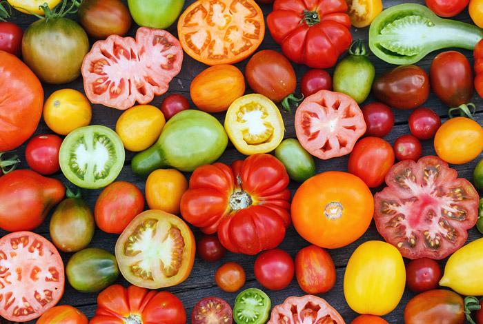 Указ Путина не коснулся запрета на поставку томатов из Турции