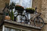 """""""Архнадзор"""" попросил исключить из программы реновации более 300 домов"""