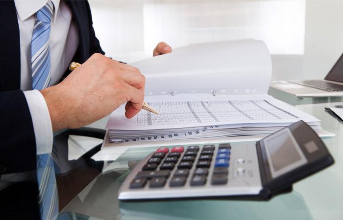 Комитет ГД согласился открыть налоговикам доступ к данным аудиторов
