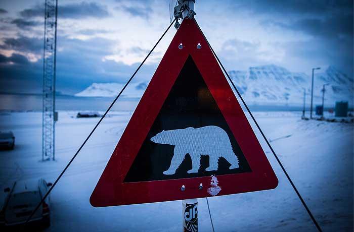 """""""Роснефть"""" открыла первое месторождение нефти на шельфе Восточной Арктики"""