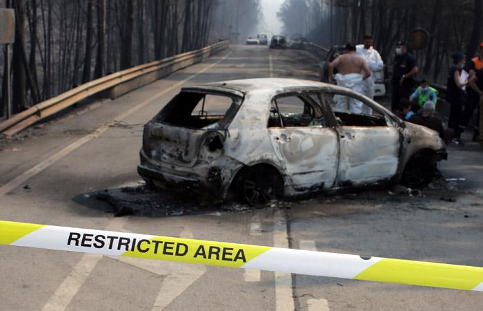 В Португалии объявлен трехдневный траур по жертвам лесных пожаров