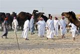 """Саудовская Аравия и ОАЭ потребовалиот Катара ограничить связи с Ираном и закрыть """"Аль-Джазиру"""""""