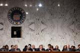 Адвокат Весельницкая предложила дать показания в сенате о встрече с Трампом-младшим