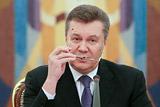 Януковича заподозрили на Украине в конституционном перевороте в 2010 году