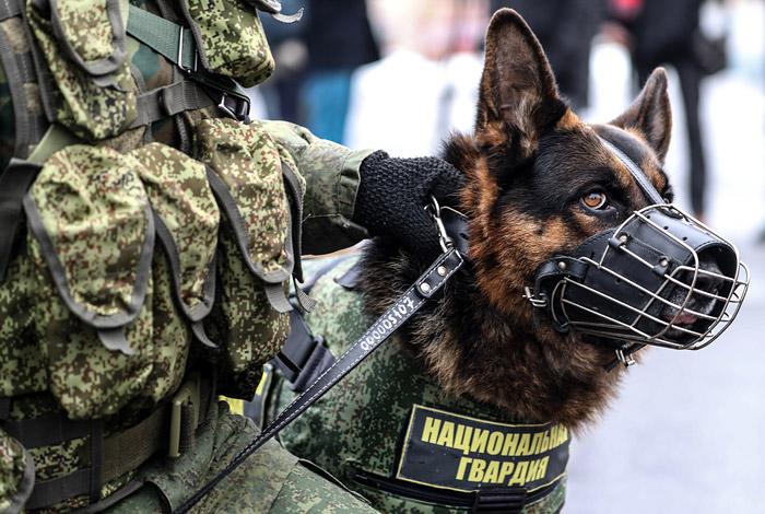 Неизвестные «заминировали» мэрии Якутска, Хабаровска иСаратова— Массовые эвакуации продолжаются