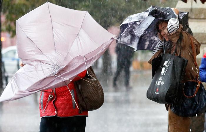 Повалены десятки деревьев, несколько человек получили травмы— циклон в российской столице