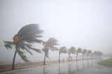 """В Атлантике сформировался новый тропический шторм """"Мария"""""""