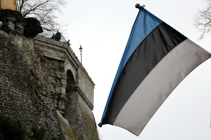 """В Эстонии назвали """"излишне оптимистичными"""" планы по строительству стены на границе с РФ"""