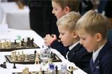 Младшеклассники будут раз в неделю играть в шахматы
