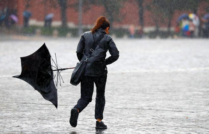Почти 15% месячной нормы осадков выпало в Москве за сутки