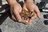 Нападение на полицейских в Ессентуках не было террористической атакой