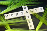 ФАС выдвинула условия согласования рекордной сделки между Bayer и Monsanto