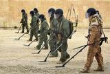 В Госдуме опровергли планы привлечь частные компании к разминированию в Сирии