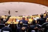 """Швеция и Уругвай внесли в Совбез ООН """"компромиссный"""" проект резолюции по СМР в Сирии"""