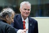 Бывший командующий армией боснийских сербов Младич приговорен к пожизненному сроку
