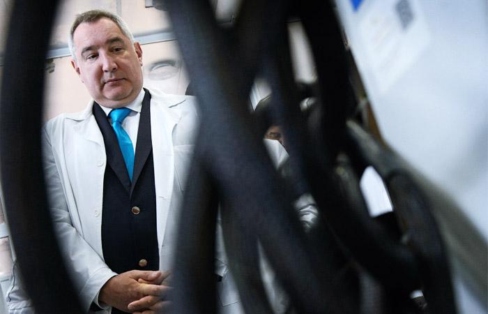 Пережившую эксперимент с жидкостным дыханием таксу отдадут Рогозину