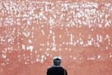 За сутки в Москве выпало почти 20% месячной нормы осадков
